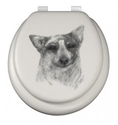 Child - Cattle dog on White