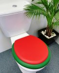 Red lid on Emerald seat